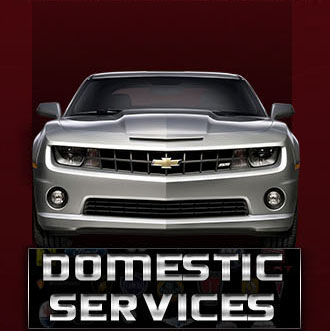 Domestic Services
